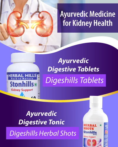 Ayurvedic Medicine for Kidney